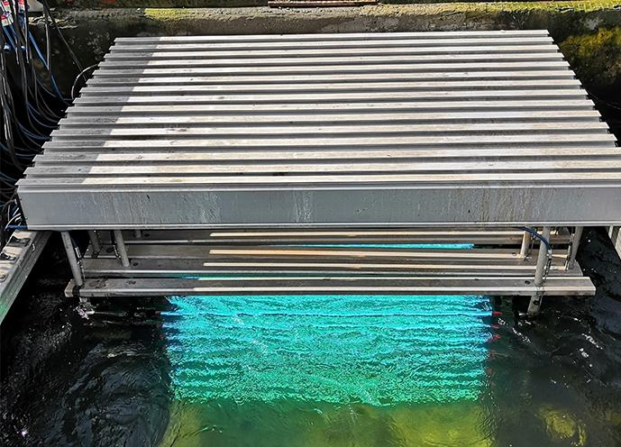 污水厂紫外线杀菌灯应用